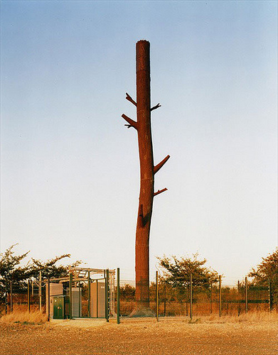 cell-phone-tower-tree-trunk